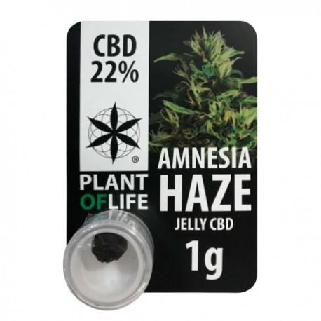 CBD Polen Jelly 22% Amnesia Haze