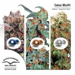 Colour Mix 4