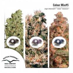 Colour Mix 5