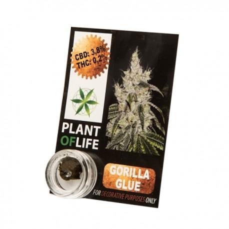 Hachís GORILLA GLUE  CBD Plant of Life(1 gramo)