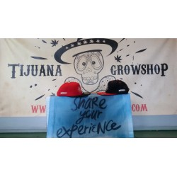Gorras Publicidad BioBizz -Tijuana Grow Shop