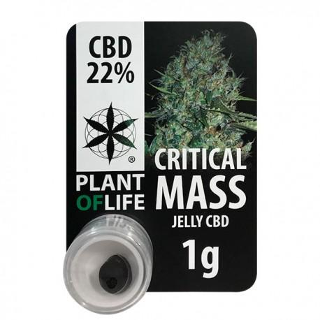 CBD Polen Jelly 22% Critical Mass
