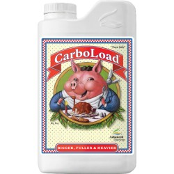 CarboLoad Liquido