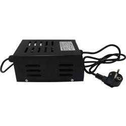 Balastro Agrolite 100 Wts Plug&Play