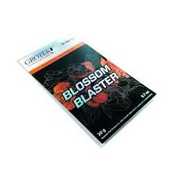 Blossom Blaster Grotek