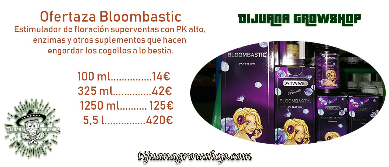 Ofertaza Bloombastic: